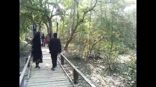 Bangladesh sundor bhon tourist