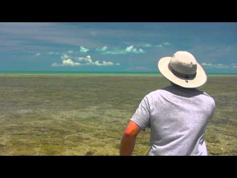 Fly Fishing for Bonefish www.reelactionfly.com PLEASE SET TO 720P HD