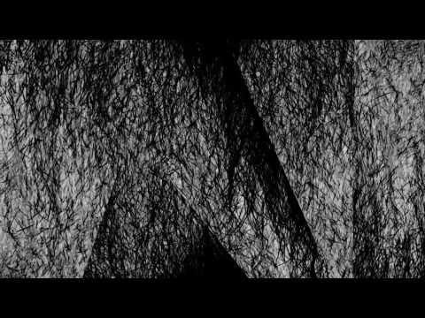 HVOB - Lion (Stimming Remix) |Official Video