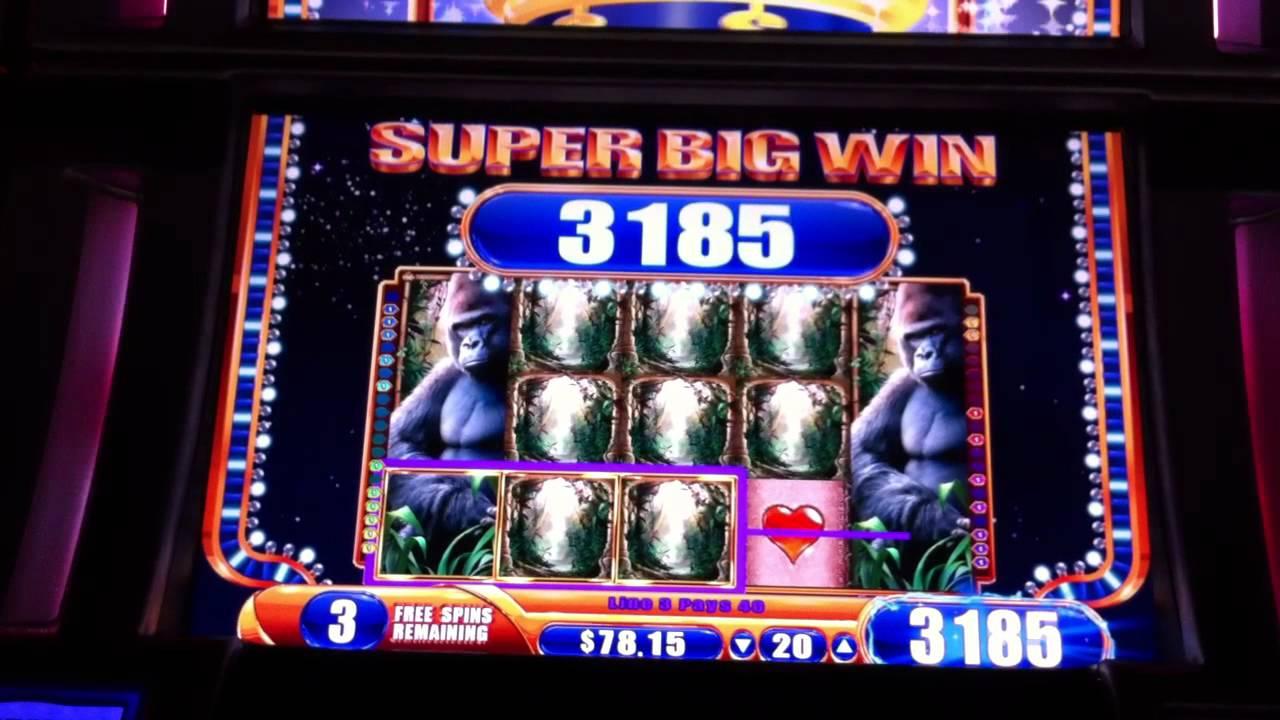 queen of the wild casino game