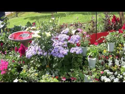 Gardeners World Live - 2009