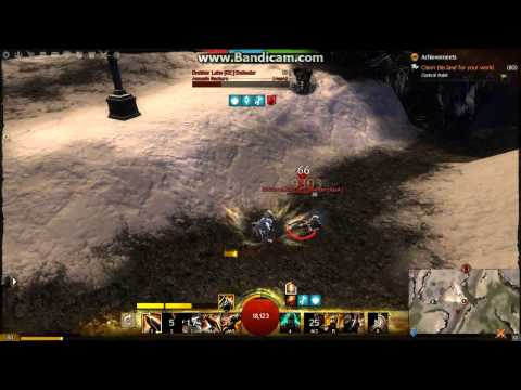 GW2 Roaming Warrior assassin WvW