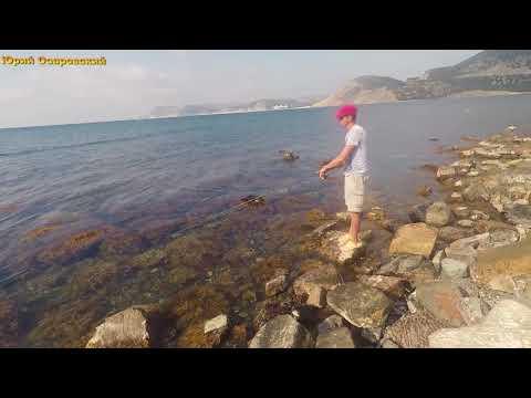 ловля саргана в черном море в анапе