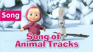 Masha and The Bear - Song of Animal Tracks (Tracks of unknown Animals)