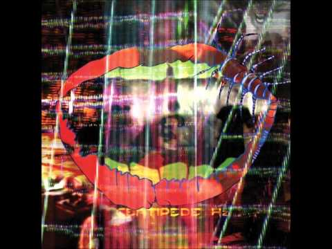 Animal Collective - Mercury