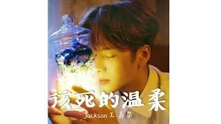 Jackson Wang 王嘉尔 - 该死的温柔  (Chi/Pin)