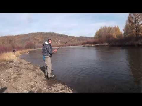 Рыбалка на счёт или бережливые монголы / The fishing game score