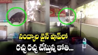 Nandyala Monkey at Wine Shop | Viral Videos | Top Telugu Media