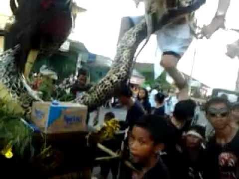ogoh2 padangsambian 2012