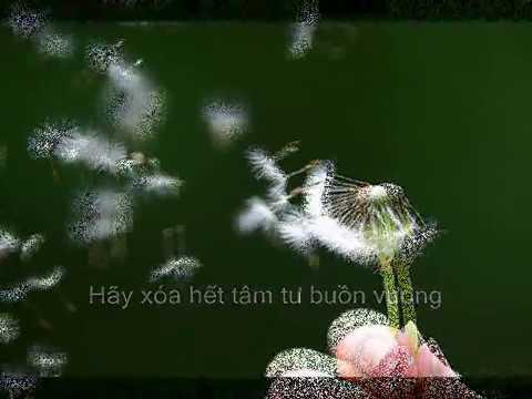 Con Đường Màu Xanh (lyrics) - TrỊnh Nam SƠn video