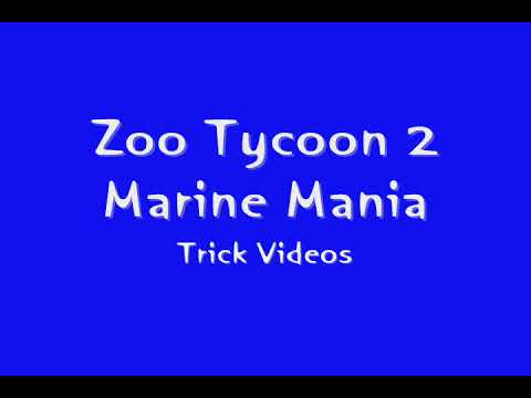 Zoo Tycoon 2 Marine Mania- California Sea Lion- Swing on Swing