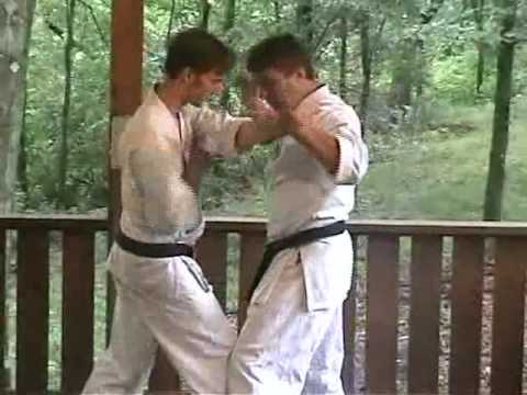 Sanchin Kata Bunkai Preview 02 - www.yoseikankarate.com Image 1