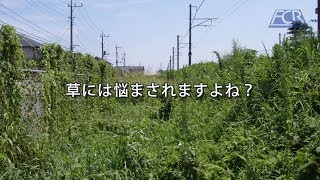 草対策関連製品