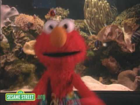Sesame Street - Love The Ocean