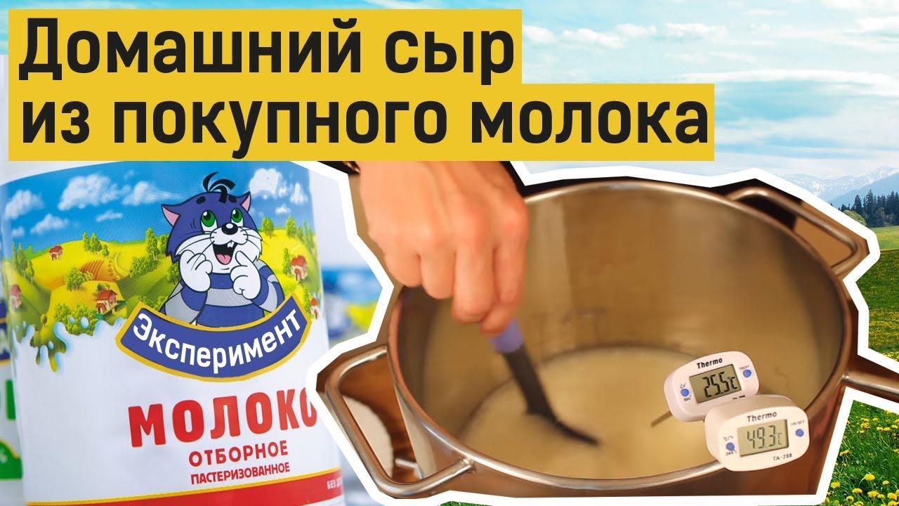 Сыр в домашних условиях из покупного молока