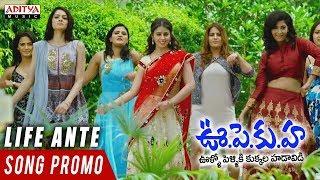 Yesukora Natu Kodi Promo Song | U PE KU HA Movie | Rajendra Prasad | Bhrammanandam | Nidhi Prasad