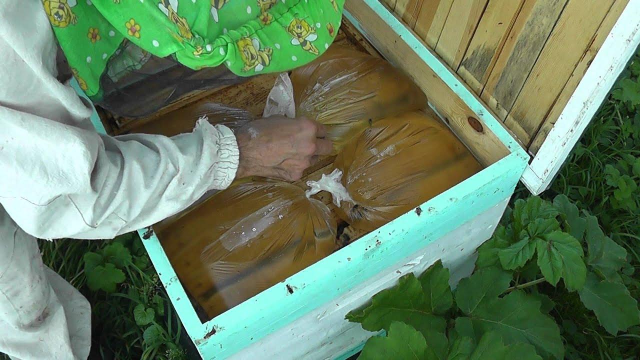 Лечение укусами пчел в домашних условиях, отзыв на 26