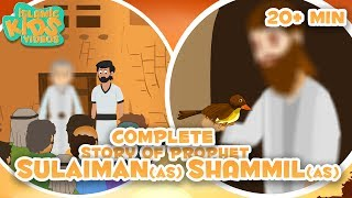 Prophet Stories In English | Prophet Shammil (AS) & Prophet Sulaiman (AS) Compilation