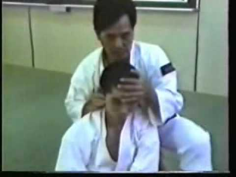 Shorinji Kempo Knockouts and Resuscitation Techniques