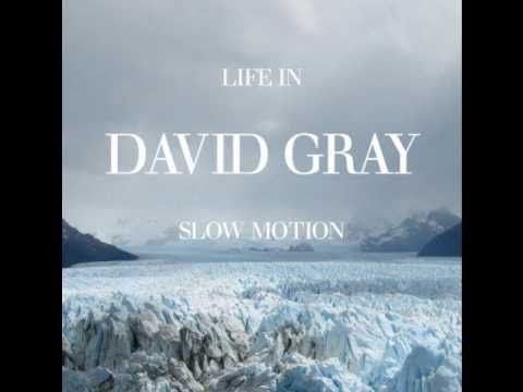 Gray, David - Slow Motion