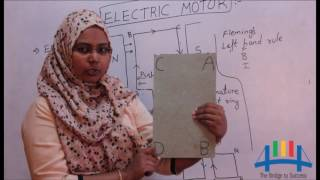 Electric Motor (Physics - class 7,8,9,10)