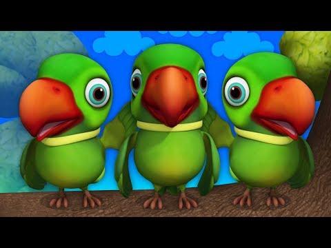 Download Lagu  Main Tota Hare Rang Ka | Hindi Rhymes | मैं तोता मैं तोता | Hindi Rhymes For Kids | Baby Songs Hindi Mp3 Free