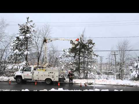 NB Power crews trimming trees / Les équipes d'élagage...