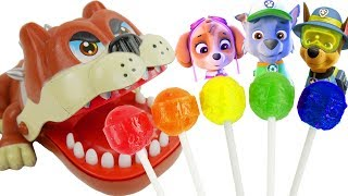 Paw Patrol Baby Skye Dog Wrong Crocodile Dentist Finger Family Song Chupa Chups Lolli Pops Learning
