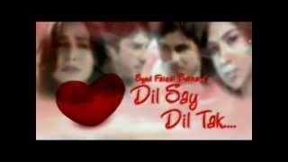 Dilse dil tak PTV home drama Official song (SHAAKII)