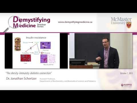 The obesity- immunity- diabetes connection. Dr. Jonathan Schertzer