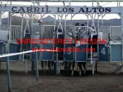 carreras de caballos en Rio Grande, Zac M1 vs 4x4 25/12/08