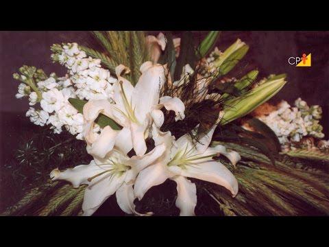 Clique e veja o vídeo Como Fazer uma Arranjo para Altar - Curso CPT Treinamento de Florista