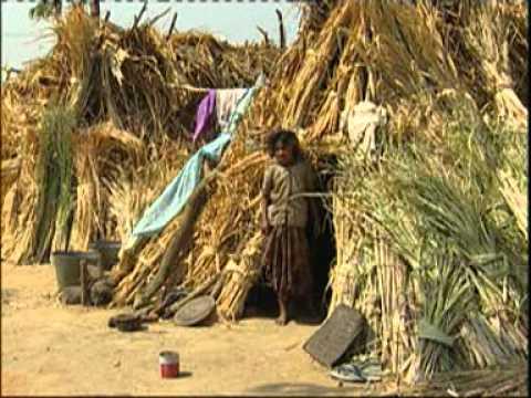 Moving Livelihoods: Migration in Andhra Pradesh