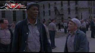 Skazani Na Shawshank The Shawshank Redemption 1994 Lektor PL DVDRip XviD AC3 6ch www VipTracker pl Group VipRipper Encoder@by bin