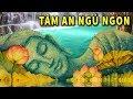 Ai Hay Mất Ngủ Buồn Phiền Hãy Nghe Chuyện Phật Giáo Này Mỗi Đêm Để Tâm An Ngủ Ngon Vạn Sự May Mắn mp3