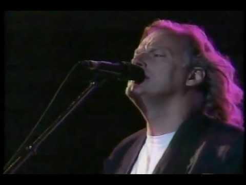 David Gilmour - Comfortably Numb