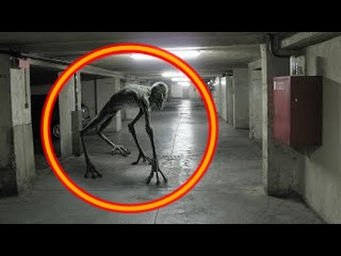 5 real aliens caught on camera real proof of aliens exist