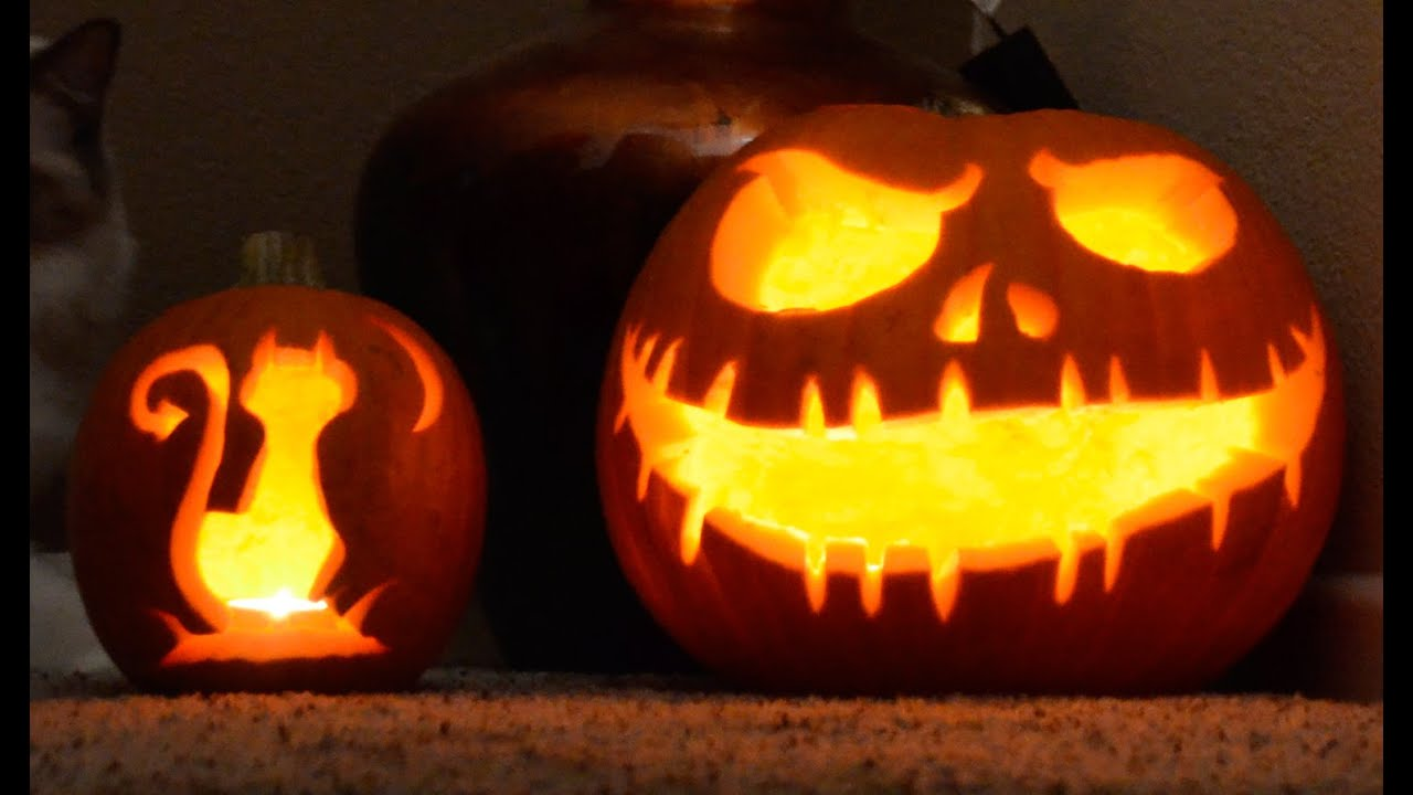 Halloween skeleton and cat pumpkin time lapse pumpkin for Skeleton pumpkin design