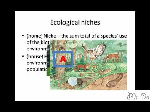 Community Ecological Niche Habitat Fundamental Realized