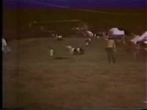 Pink Floyd - Atom Heart Mother Live Part 2