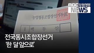 R)전국동시 조합장선거 '한 달 앞으로'