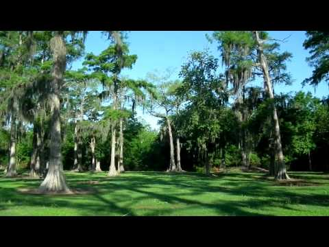 Louisiana Cypress Lake RV Resort panoramic view beautiful park