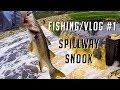 Spillway SNOOK - Vlog #1 - Sebring Fl New Tackle Shop