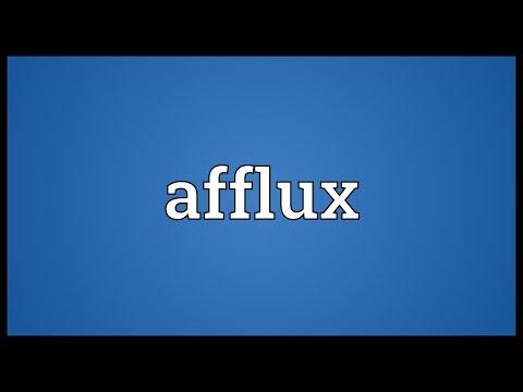 Header of Afflux