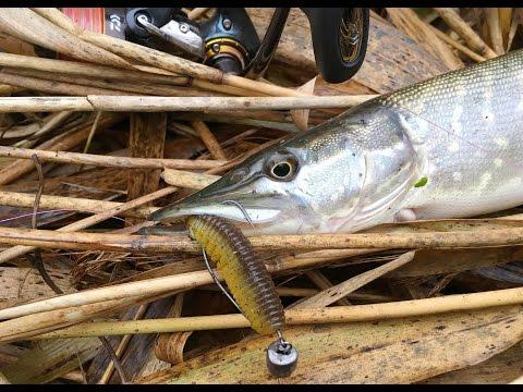 ловля щуки на джиг на средних реках