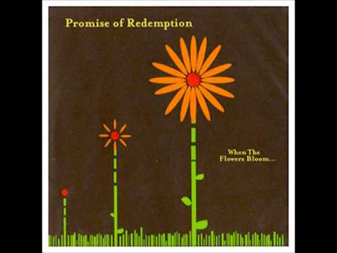Promise Of Redemption - Trace Those Steps