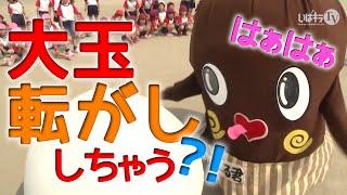 大玉転がしにチャレンジ!…ど、どっちが大玉ネバ?!【ねば~る君が行く!】