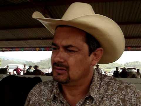 Pasto Mulato II en el Concurso de la Vaca Lechera en Tihuatlan, Veracruz. Mexico