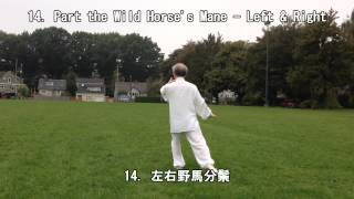 40 Form Tai Chi (Back View) (2013.09.14)