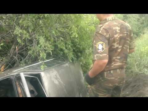 Хозяин иномарки сбежал с места ДТП, оставив в салоне брошенную собаку в Иркутске
